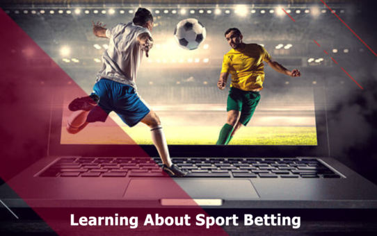 sport betting profits in 2020